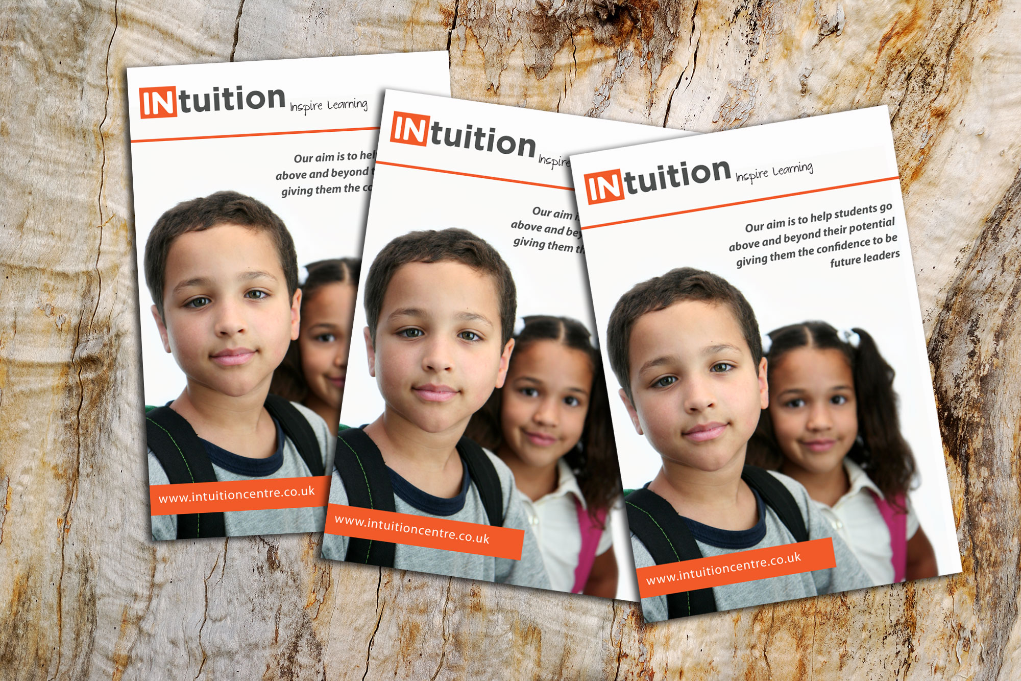 Brochure Design for Intuition